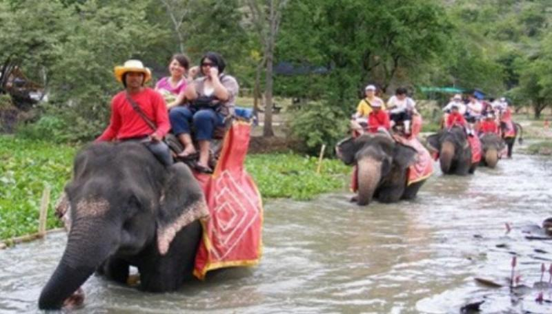 Elephant Riding Image 2