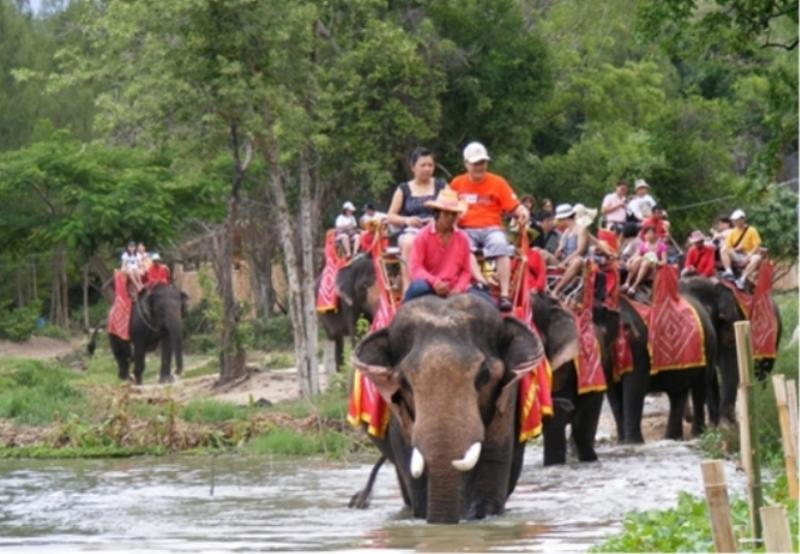 Elephant Riding Image 1