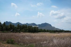 Land with Stunning Mountain View only 1.2 km from Dolphin Bay Beach
