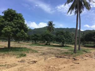 400 sqm Land Near Local Market and only 2km from Dolphin Bay Beac