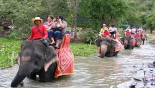 Elephant Riding Slide 2